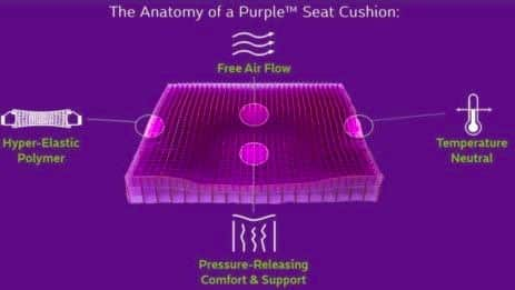 Purple Seat Cushion Review