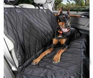 Wondrous Best Car Seat Covers For Dog Hair November 2019 Real Creativecarmelina Interior Chair Design Creativecarmelinacom