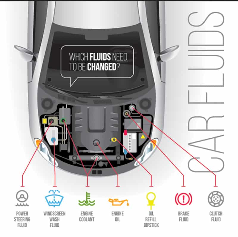Diagram of different car fluids and where they go.